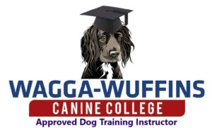 waggainstructor